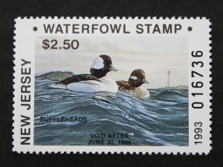 Sale: (nj10) 1993 Jersey State Duck Stamp photo