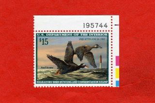 Rw63 Plate No.  Single,  1996 Federal Duck Stamp; Mnh; Wilhelm Goebel,  Surf Scoter photo