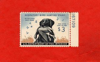 Rw26 Plate No.  Single,  1959 Federal Duck Stamp; Maynard Reece,  Black Lab photo