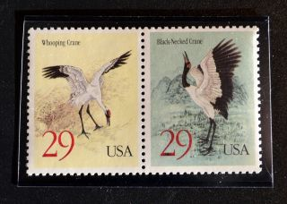 2867 - 68 Black - Necked Crane & Whooping Crane Attached photo