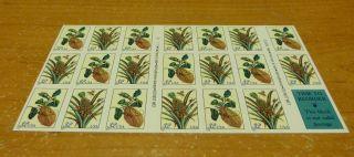 3127a Merian Prints Pineapple Citron Pane Of 20 3126 - 27 photo