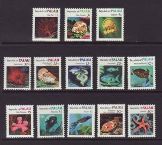 Palau Sea Creatures 9 - 21 Vf 11805 photo