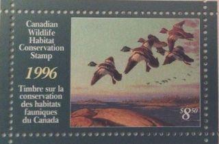 1996 Canadian Wildlife Habitat Conservation Stamp Booklet $8.  50 Fwh12 Bob photo