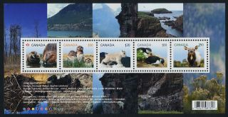 Canada Issue S/s Baby Animals,  Puffin,  Mountain Goat,  Wapiti,  Owl photo