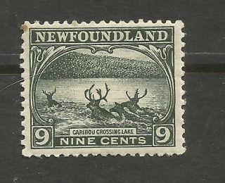 Newfoundland Scott 138 From 1923 photo