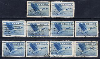 Canada 320 (10) 1952 7 Cent Blue Canada Goose 10 photo