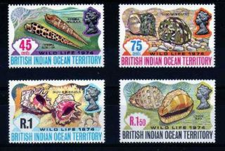British Indian Ocean Territory 1974 Wildlife 2nd Series Shells,  Sg 58 - 61 U/mint photo