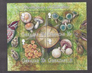 Gibraltar 953a Souvenir Sheet photo