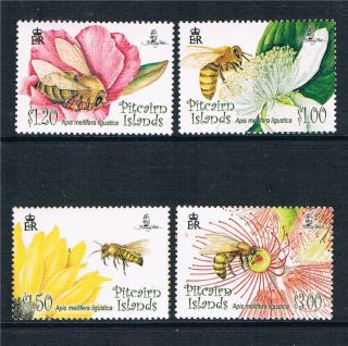 Pitcairn Is 2008 Flowers & Bees Sg 763/6 photo