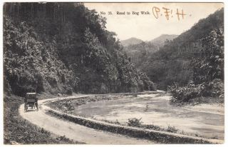 Jamaica Horse Carriage On Road To Bog Walk Duperly Postcard To Usa 1907 Cover photo