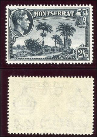 Montserrat 1943 Kgvi 2s6d Pale Slate Mlh.  Sg 109a Var.  Cw 19a. photo