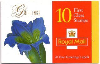 Kx9 / Db13 (10) Cyl W1 W1 W2 W1 W1 W2 1997 Flowers Greetings Booklet Um photo