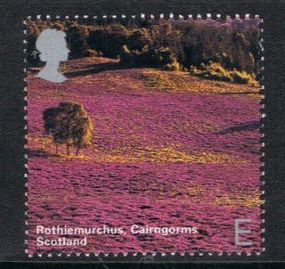 Rothiemurchus,  Cairngorms Scotland - Illustrated On 2006 British Stamp - Nh photo