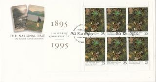 (19726) Gb Fdc National Trust Full Booklet Pane - 25 April 1995 Tintagel photo