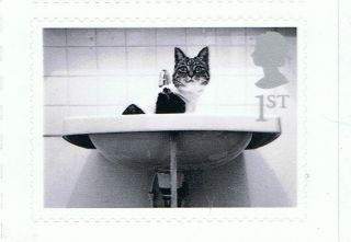 Cat In Sink Image On 2001 Self - Adhesive British Stamp - Nh - Rare photo