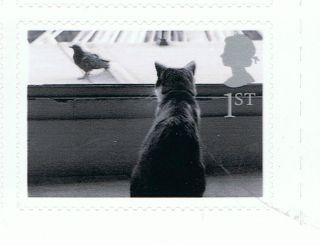 Cat At Window Image On 2001 Self - Adhesive British Stamp - Nh - Rare photo