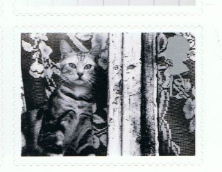 Cat Looking Out Window Image 2001 Self - Adhesive British Stamp - Nh - Rare photo