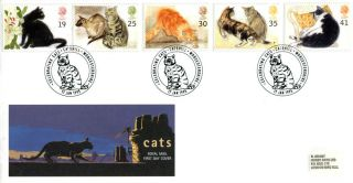 17 January 1995 Cats Royal Mail First Day Cover Better Catshill Shs photo