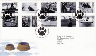 13 February 2001 Cats And Dogs Royal Mail First Day Cover Petts Wood Shs (a) photo