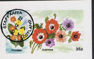 Staffa 1972 Flowers Cowslips Anemone Mini - Sheet photo