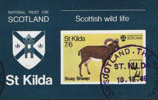 St Kilda 1969 National Trust Soay Sheep Mini - Sheet photo