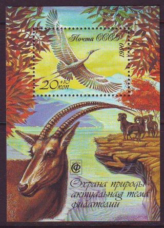 Russia,  1990 - Nature Conservation - - S/s photo