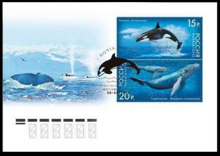 2012.  Russia.  Fauna Of Russia.  Marine Life.  Whales Fdc photo