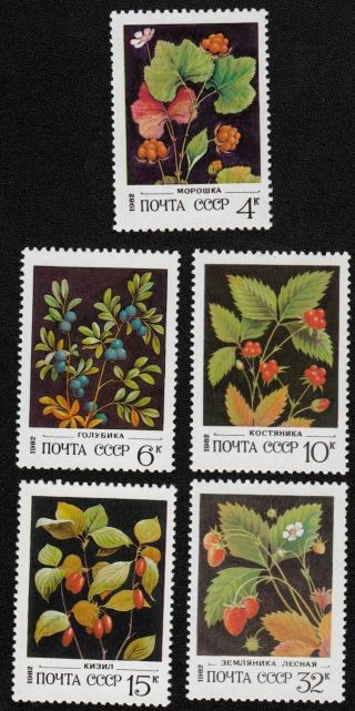 Russia,  Ussr,  1982,  Sc 5023 - 5027, .  Si728 photo