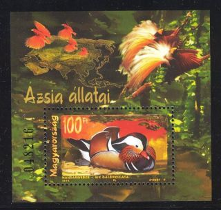 Hungary - 1999.  S/s - Animals Of Asia / Duck Mi:bl.  250. photo