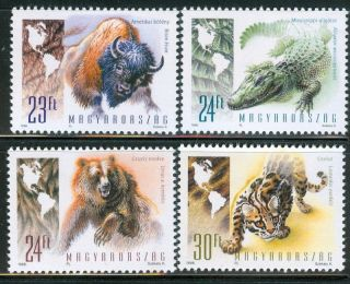 Hungary - 1998.  Wild Animals Of The Americas (buffalo,  Grizzly) Mi 4497 - 4500 photo
