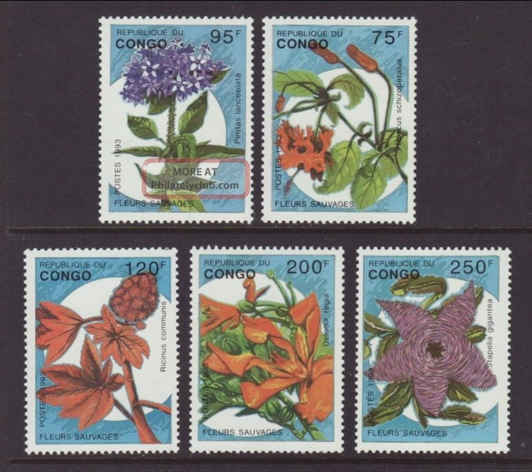 Congo Flowers 1016 - 1020 Vf (12984) Africa photo