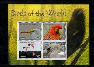 Liberia 2013 Birds Of World Ii 4v M/s Egret Macaw Spoonbill Mute Swan photo