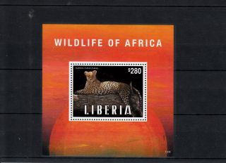 Liberia 2013 Wildlife Of Africa 1v S/s Leopard Animals Pantera Pardus Pardus photo