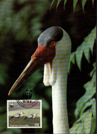 (70495) Maxicard - Malawi - Wattled Crane - 1987 photo