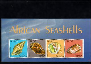 Ghana 2013 African Seashells 4v M/s Shells Marine Gymnobela Euspira Conus photo