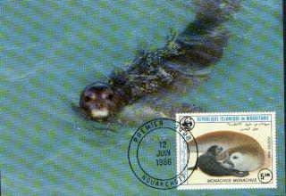 (70515) Maxicard - Mauritania - Seal - 1986 photo
