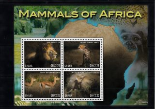Ghana 2013 Mammals Of Africa 4v M/s Lion Cheetah Impala Elephant Animals photo