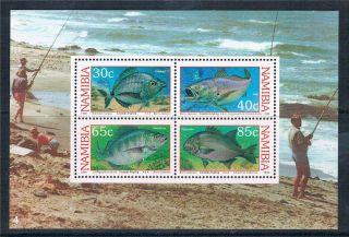 Namibia 1994 Coastal Angling Ms Sg 640 photo