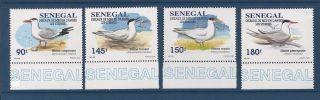 Senegal 1183 - 1186 photo