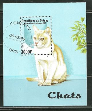 Guinea 1437 Cto S/s Cats photo