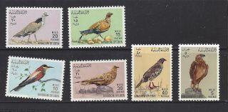 Libya 269 - 274 Birds photo
