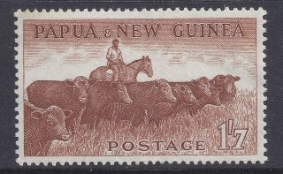 1958 - 1960 Papua Guinea 1/7d Cattle Muh/mnh Our Ref B3 photo