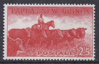 1958 - 1960 Papua Guinea 2/5d Cattle Fine Muh/mnh photo