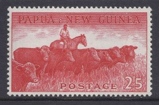 1958 - 1960 Papua Guinea 2/5d Cattle With Adhesions Muh/mnh photo