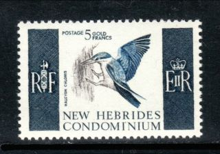 Hebrides British Bird 107 Vf (12981) photo