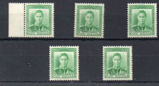 N Z 1938 ½d Kgv1 Definitive – 3 U/mint & 2 Lightly Mounted Copies photo
