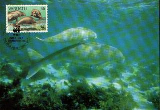 (70533) Maxicard - Vanuatu - Dugong - 1988 photo