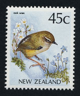 Zealand 924 Bird,  Rock Wren photo