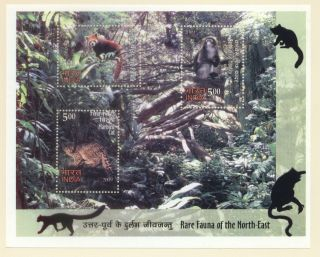 India 2508 M/s Rare Fauna Of The North East 1/10/2009 photo