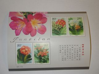 China 2000 - 24 Clivia Souvenir Sheet - Flower photo